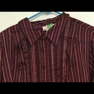 Two long sleeved striped shirts Maroon and Purple